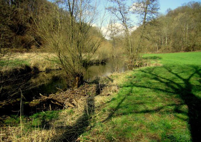 Integrierter Gewässerschutz