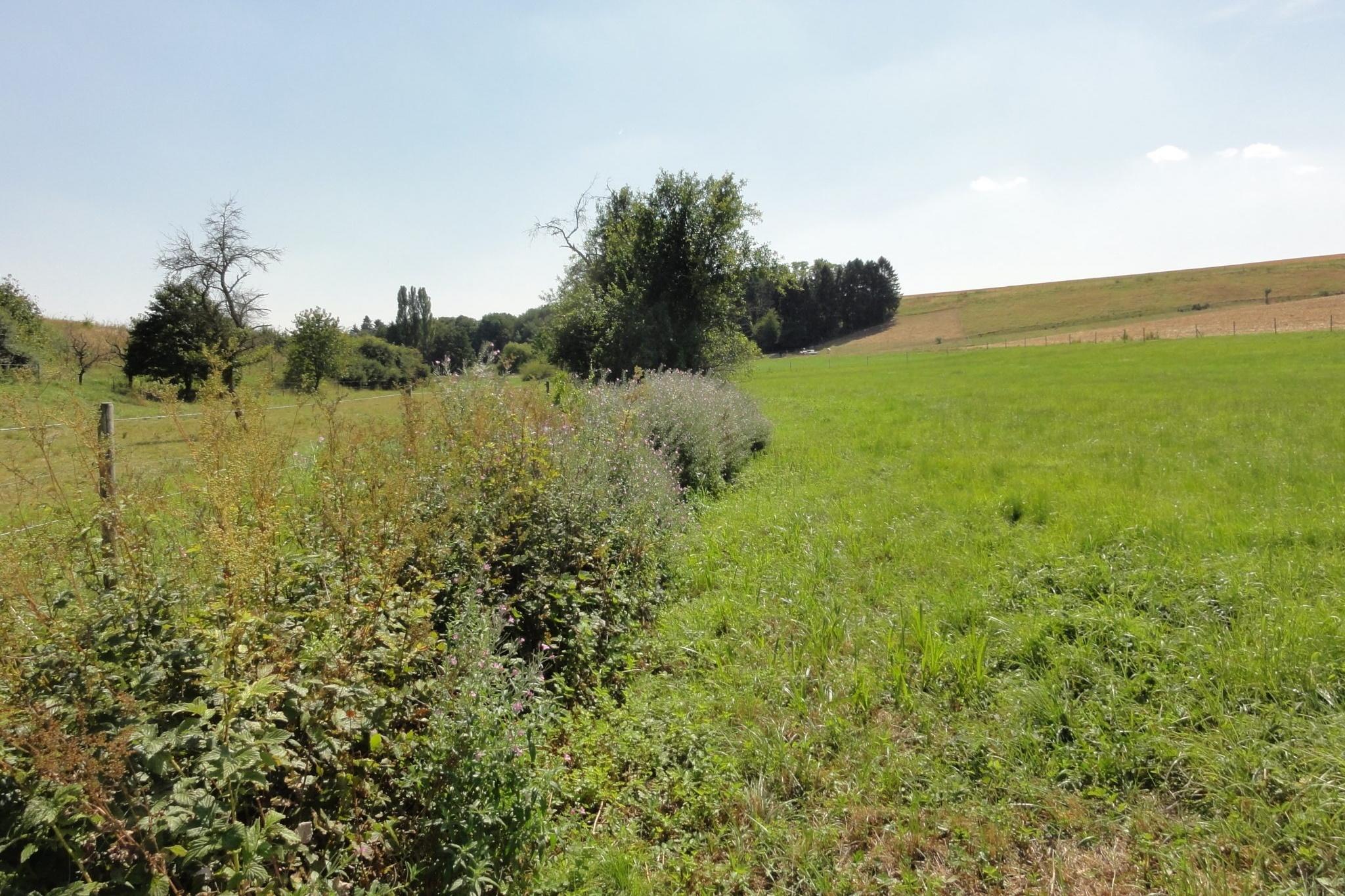Einzugsgebiet des Wäschbachs.